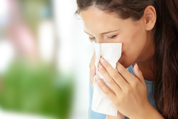猫アレルギーを克服した人に聞く7つの対処方法