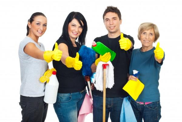 猫毛をきれいに除去するために効率のいい7つの掃除法