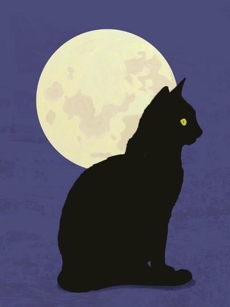 黒猫が大好きなあなたに超かわいい画像を15ショット