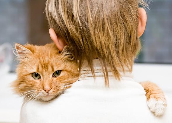 飼い主も猫もお互いが癒しとなる7つの接し方のコツ