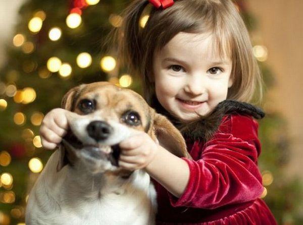 子供が上手に犬を育てられる簡単な7つの飼い方ポイント