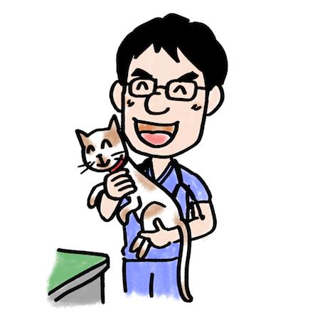猫の病気を知って愛猫を守ろう7つの病気解説