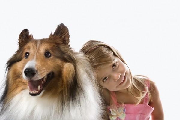 犬の画像ってこんなにかわいい★キュンキュン11連発