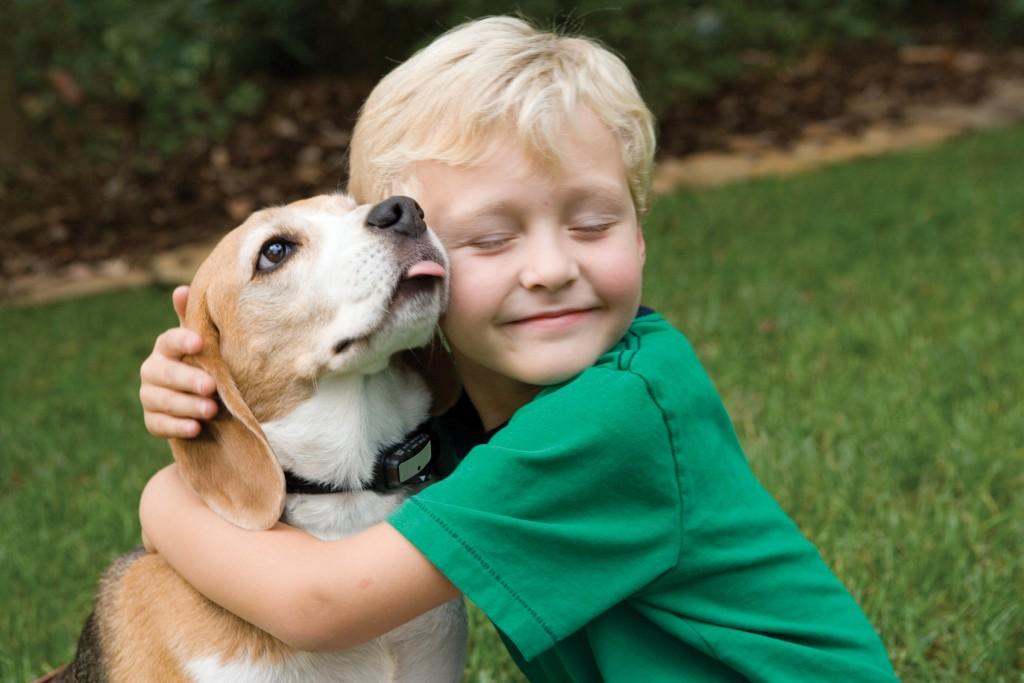 子供でもできる★7つの上手な子犬のしつけ方教えます。