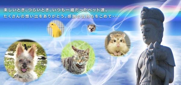 東京近郊のペット霊園の評判色々集めてみました