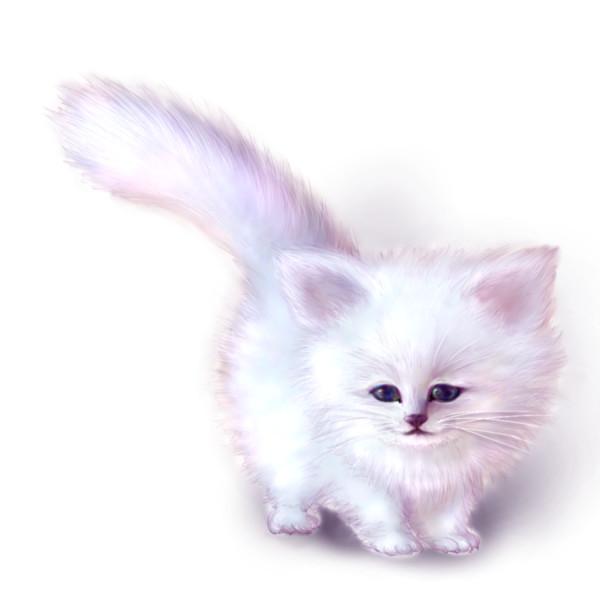 モフモフの猫の種類の画像☆たんまり11個集めました