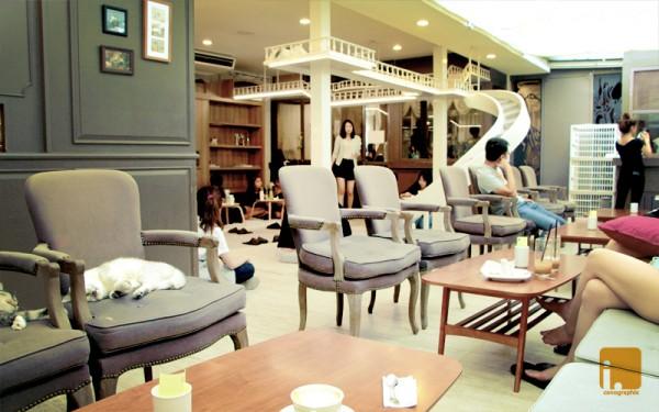 猫カフェに行くなら名古屋でしょ。人気の店舗7店紹介
