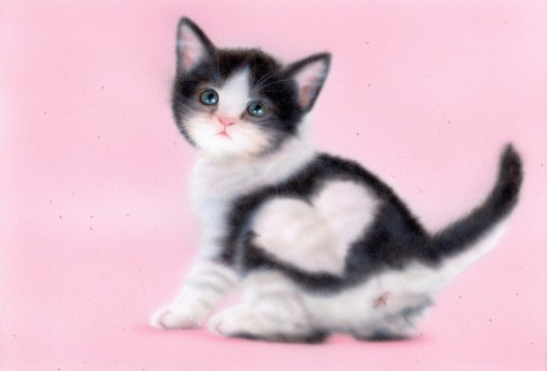 子猫ちゃん好きのあなたにはこれ★癒される画像集!
