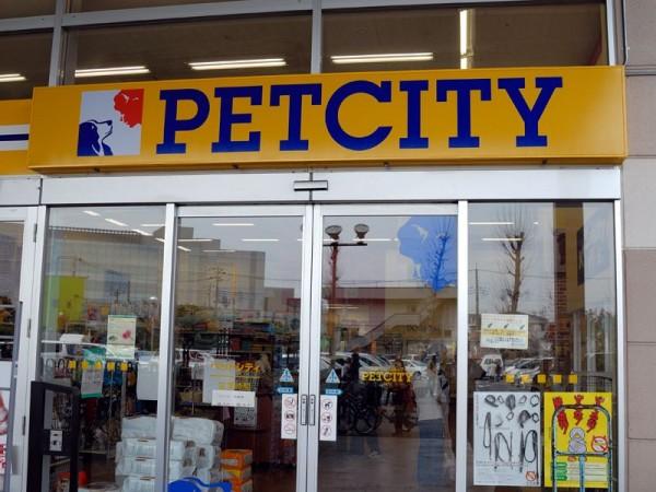 ペットシティに行くならチェックしたい7つのグッズ!
