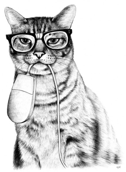 猫の画像で珍しいものだけ11選集めてみました。