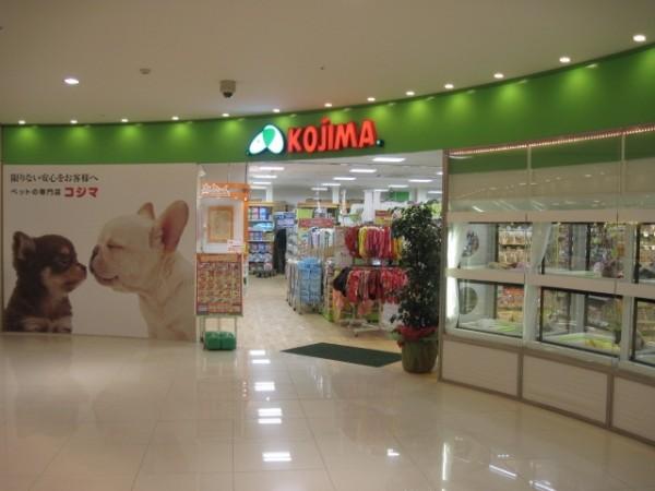 ペットのコジマが他の店舗とは違う沢山のメリット