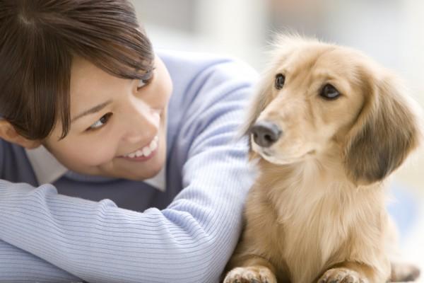 一人暮らしでペットを飼うことがとても大変な7つの理由