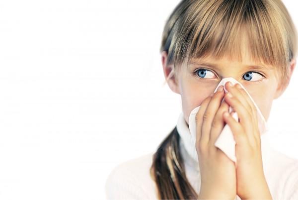 猫のアレルギー症状に負けない5つの対策とは