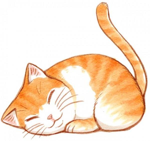 猫のイラストを描くならこう描け!7つの書き方
