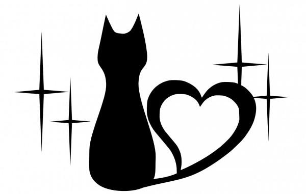 猫のイラストをうまく書きたい人におすすめの方法