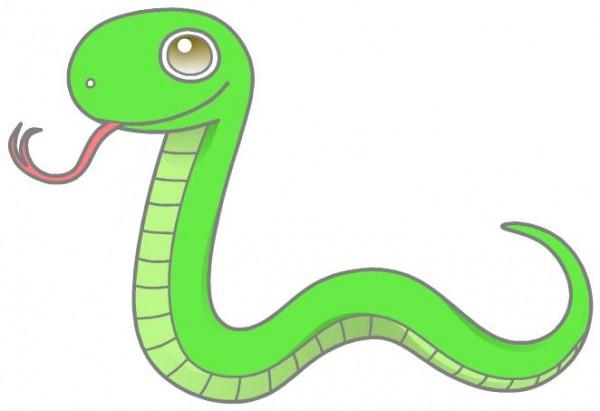 爬虫類をペットにする人の性格や恋愛観は?関係を深めるコツ