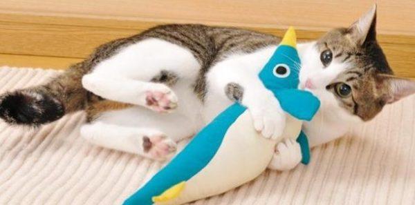 猫のおもちゃを買うならこれがおすすめ☆