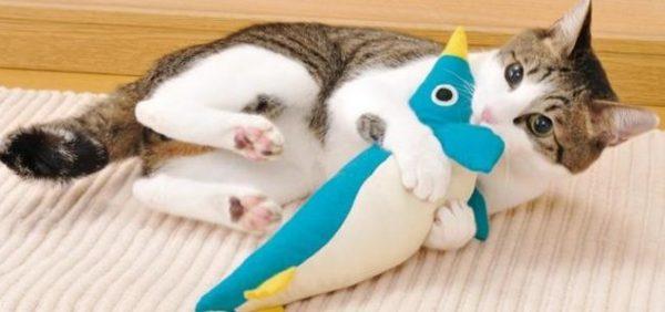 猫のおもちゃ☆絶対喜ぶものを画像でご紹介